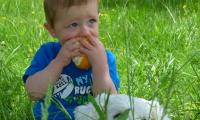 Boy eating grapefruit.JPG
